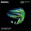 293th Technology in EMEA by Delottie 500